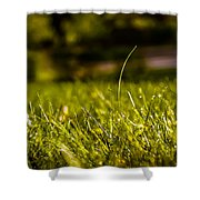 Standing Up Shower Curtain