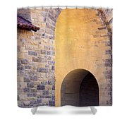 Stanford Arches Shower Curtain