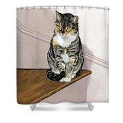 Stanzie Cat Shower Curtain
