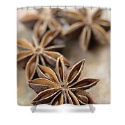 Star Anise  Shower Curtain