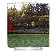 Star Barn Shower Curtain