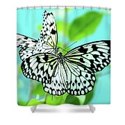Star Crossed Lovers. Japanese Poetry Shower Curtain