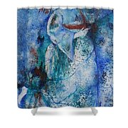 Star Dancer Shower Curtain