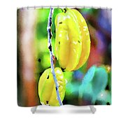 Star Fruit  Shower Curtain