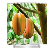 Star Fruit On The Tree Shower Curtain