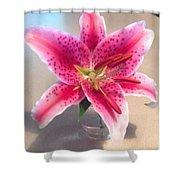 Star Gaze Lilly Shower Curtain