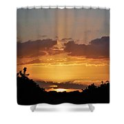 Star Glow Shower Curtain