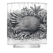 Star-nosed Mole Shower Curtain