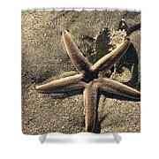Star Of The Sea Shower Curtain