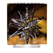 Star Ornament Shower Curtain