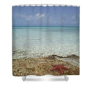 Star Paradise Shower Curtain