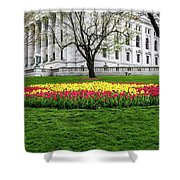 Star Tulips Shower Curtain