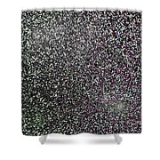 Starfield Variations 7-22-2015 #2 Shower Curtain