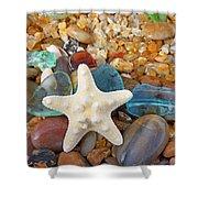 Starfish Art Prints Star Fish Seaglass Sea Glass Shower Curtain