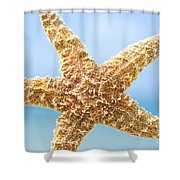 Starfish Close-up Shower Curtain