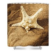 Starfish In Sand Shower Curtain