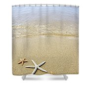 Starfish On Beach Shower Curtain