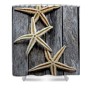Starfishes In Wooden Shower Curtain
