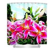 Stargazer Lilies #1 Shower Curtain