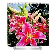Stargazer Lilies #2 Shower Curtain