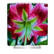 Stargazer  Shower Curtain
