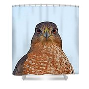 Staring Eyes Shower Curtain