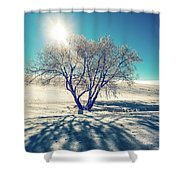 Stark Shadows Shower Curtain