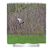 Starling Take-off Shower Curtain
