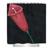 Starr Lilly Shower Curtain