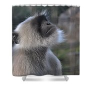 Starring In The Sky Shower Curtain