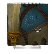 Starry Ceiling Shower Curtain