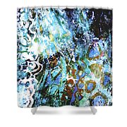 Starry Contribution 1 Shower Curtain