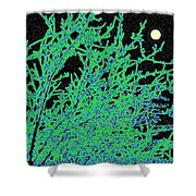 Starry Moonlit Night Shower Curtain