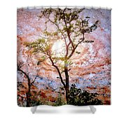 Starry Night Fantasy, Tree Silhouette Shower Curtain