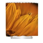 Starry Sunflower Shower Curtain