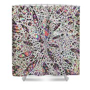Stars Give Birth To Color Shower Curtain
