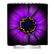 Stars In The Daisy Shower Curtain