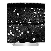 Stars On The Concrete Shower Curtain