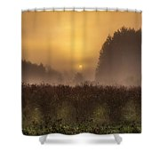 Start Of A New Day Shower Curtain by Blanca Braun