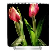 Starting To Bloom Shower Curtain