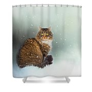 Starting To Snow Again Shower Curtain