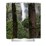Starvation Creek Falls Between The Trees Shower Curtain