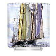 Stately Mariners Shower Curtain