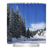 Stately Pines Shower Curtain