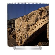 Statue In The Temple Of Domitian Shower Curtain