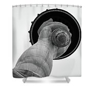 Statue Of Liberty, Hand And Torch Shower Curtain