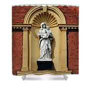 Statue Of Mother And Child Shower Curtain