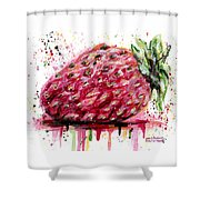 Stawberry 1 Shower Curtain