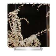Stay Close Shower Curtain