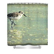 Staying Focused Shower Curtain